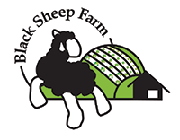 Black Sheep Farm
